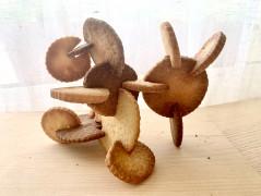 Cookie sculptures